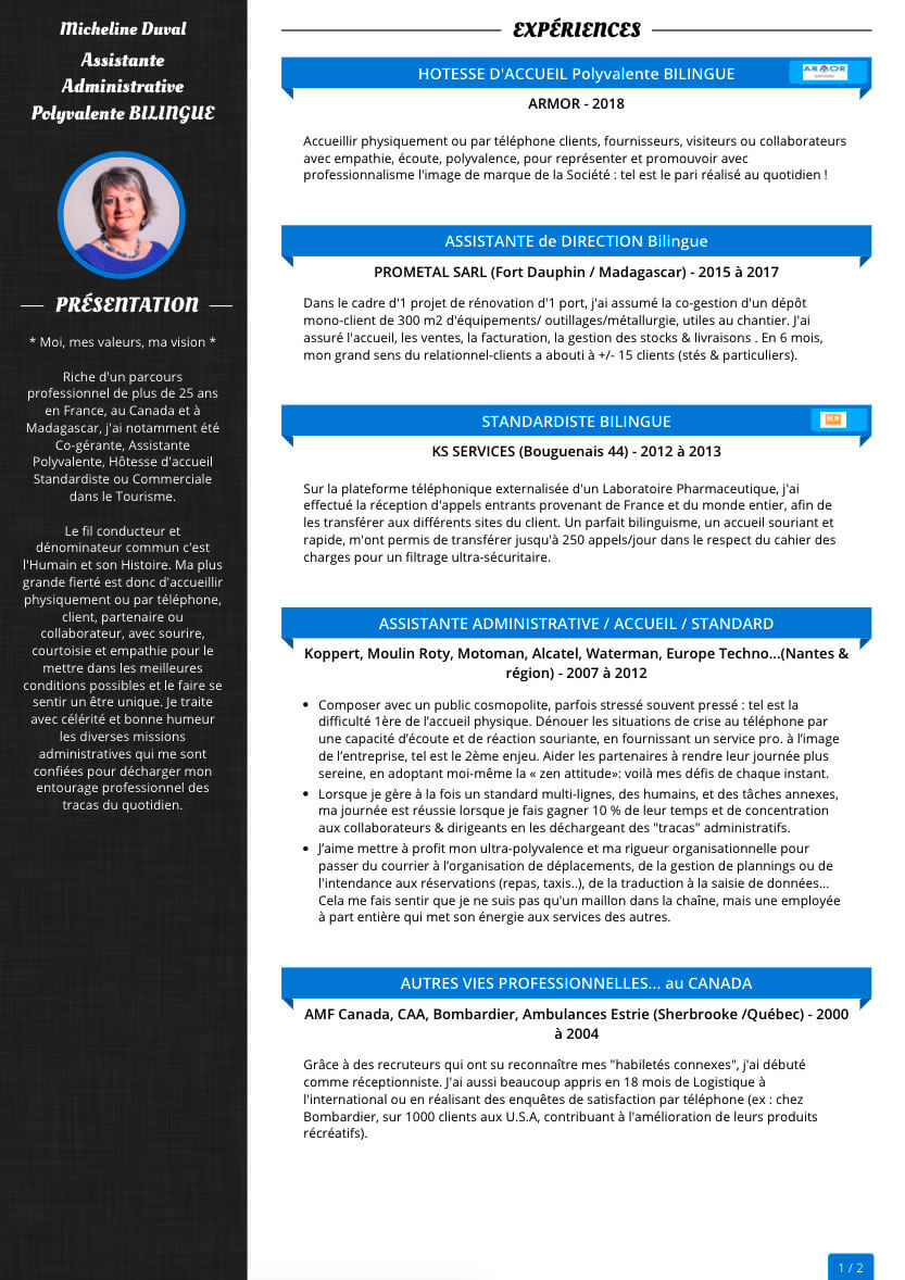Graphic variations of resume template