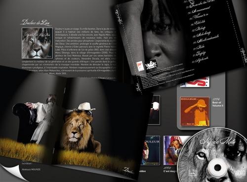 pochette d u0026 39 album  livret  dossier de presse  flyer  affiche  kakemono  pour l u0026 39 artiste chanteur