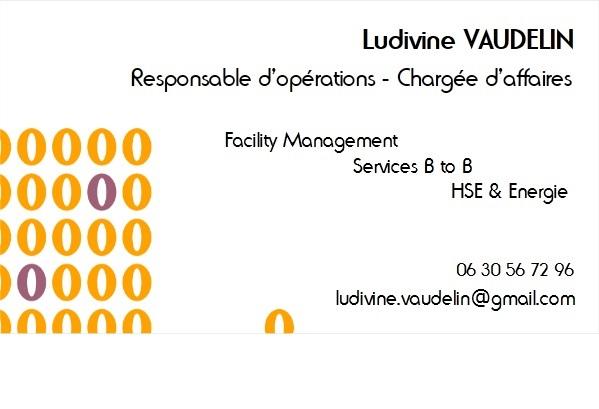ludivine vaudelin - cv - responsable d u0026 39 op u00e9rations - charg u00e9e d u0026 39 affaires