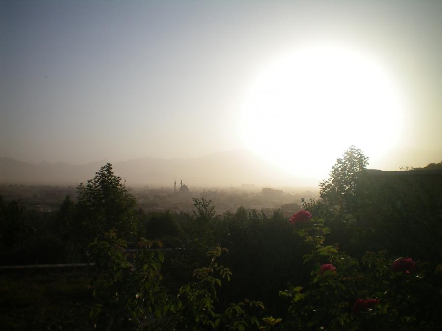 marguerite nebelsztein - cv