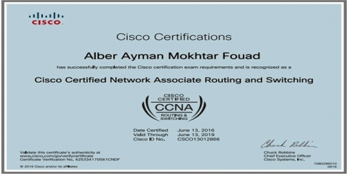 alber mokhtar resume it technical support engineer