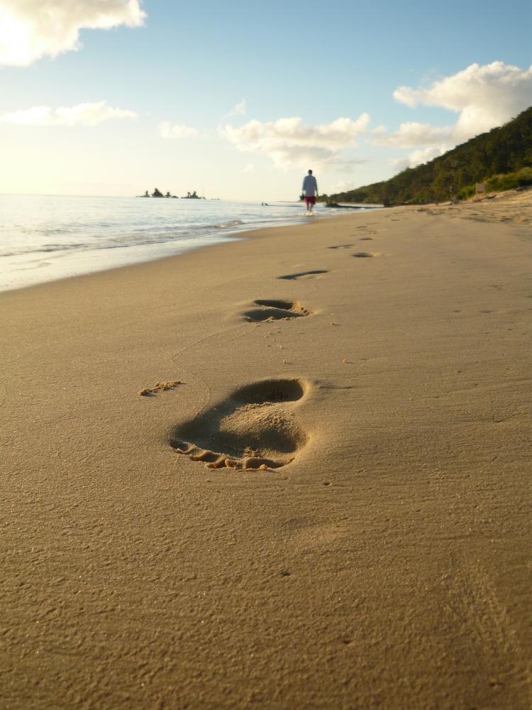 moreton island  australie - cv