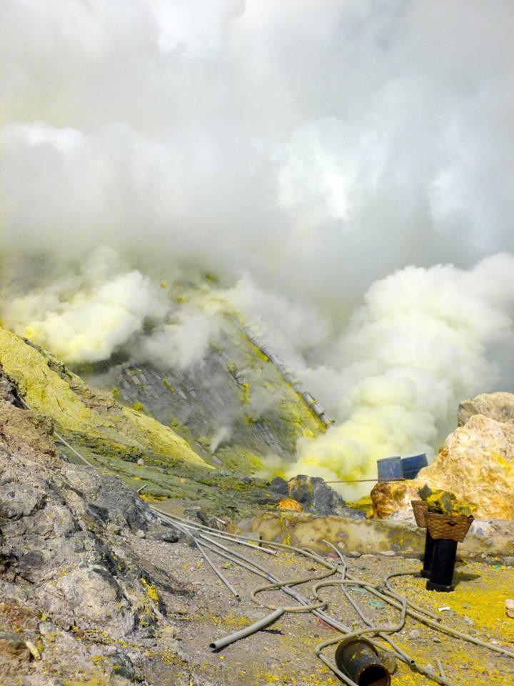 lise troulier - tourisme - h u00f4tellerie