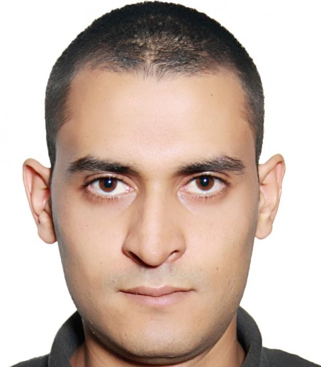 mohamed ali arfaoui - cv